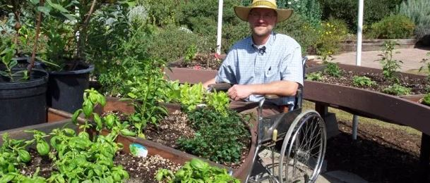 man in wheelchair planting herbs in garden in backyard of home