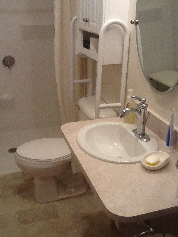 Accessible sink with toilet grab bars and barrier-free shower