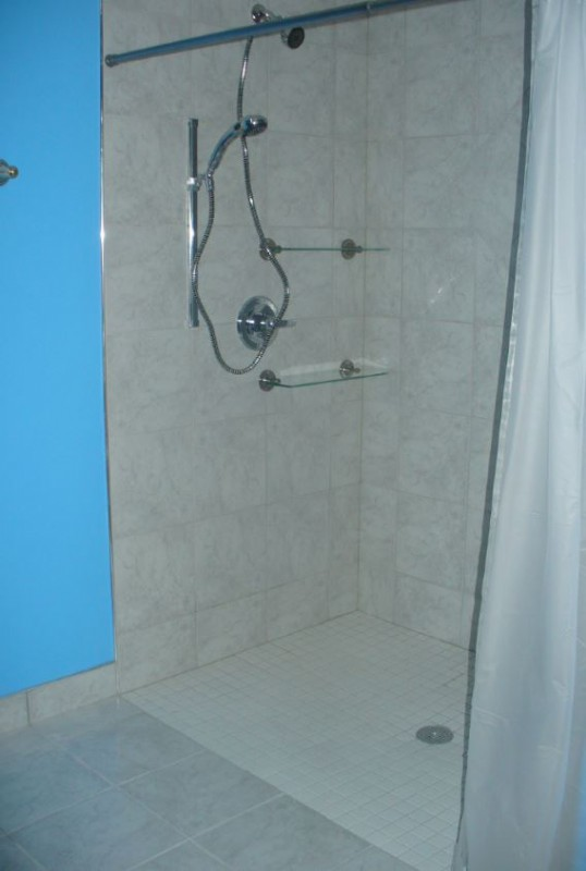 Roll-in shower-with-hand-held-shower-hose-in-Chicago-home