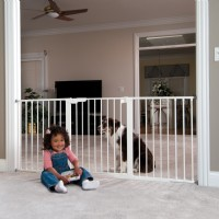 Child in front of Baby Gate