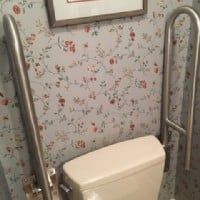 toilet-grab-bars-wall-mounted-in-home-in-Indianpolis